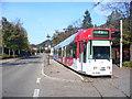 UMU1412 : Freiburg - Endstation, Günterstal (Guenterstal Tram Terminus) by Colin Smith
