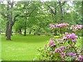 UUU9226 : Schlosspark Schoenhausen (Schoenhausen Palace Park) by Colin Smith