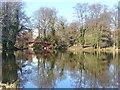 UUU8420 : Schlosspark Charlottenburg - Karpfenteich (Charlottenburg Palace Park - Carp Pond) by Colin Smith