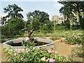 UUU7008 : Park Babelsberg - Brunnen und Goldener Rosengarten (Fountain and Golden Rose Garden) by Colin Smith